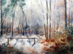 小树林水彩画