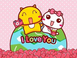 哈咪猫的爱情