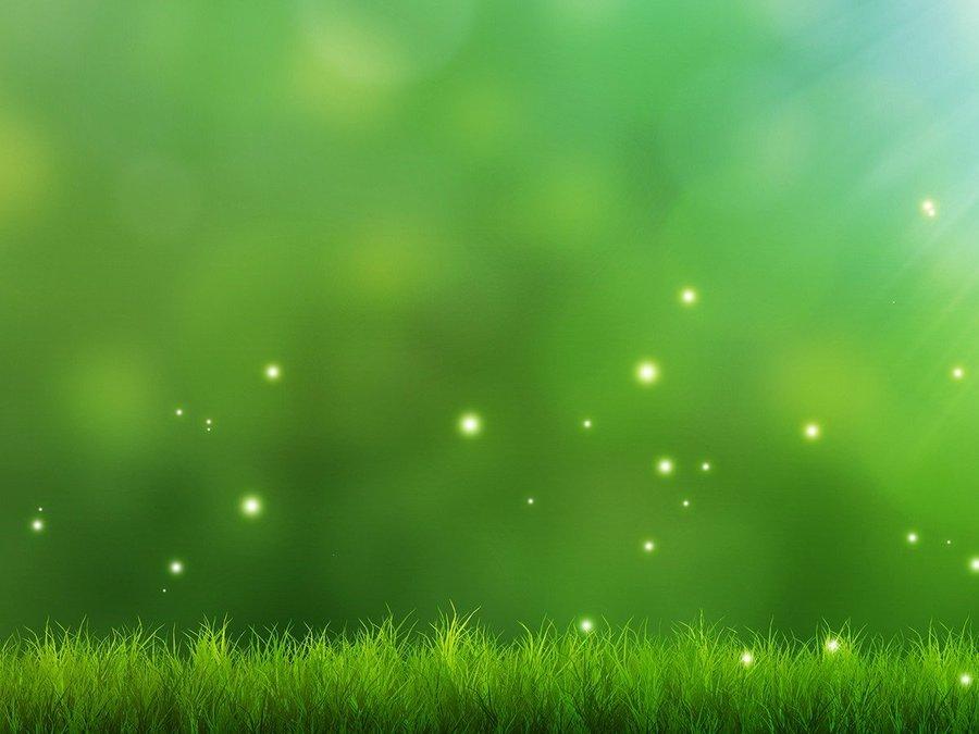 背景 壁纸 绿色 绿叶 设计 矢量 矢量图 树叶 素材 植物 桌面 900_675