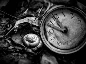 流逝的时光一去不复返