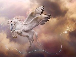空中的独角兽
