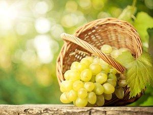 籃子里的青提葡萄