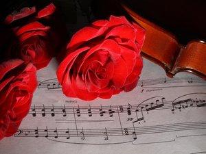 乐谱上的红玫瑰
